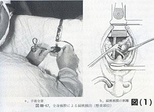 塚原耳鼻咽喉科 , Q\u0026A診察室